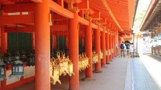 世界遺産!奈良県 春日大社の万灯籠は年2回!いつといつ??